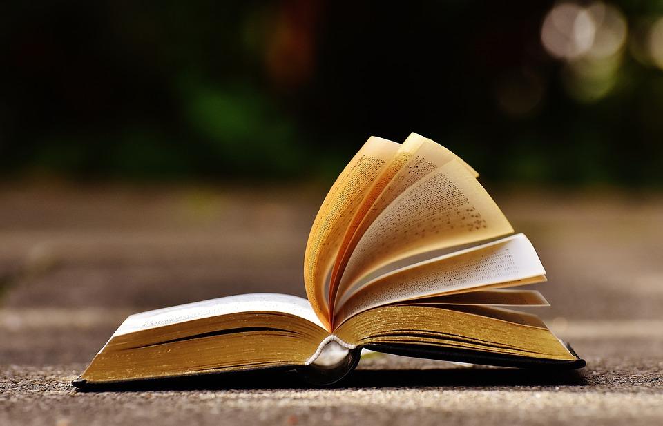 [wywiad] Tłumaczenie książek – tłumacz w roli inwestora