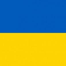 E-Lingua Tłumaczenia