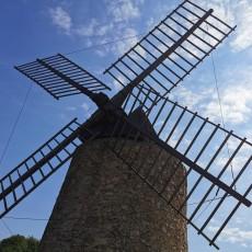 Katarzyna Gorczyca